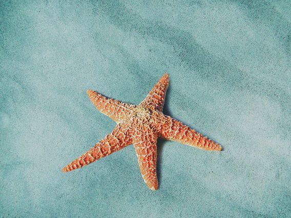 Starfish van Jacky Gerritsen
