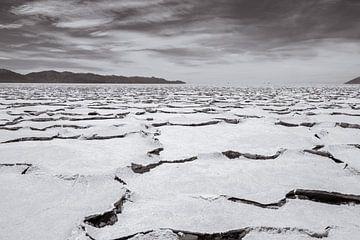 Argentinië zoutvlakten in Salta van Linda Hanzen