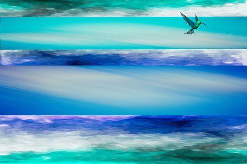 Kolibrie hoog in de lucht