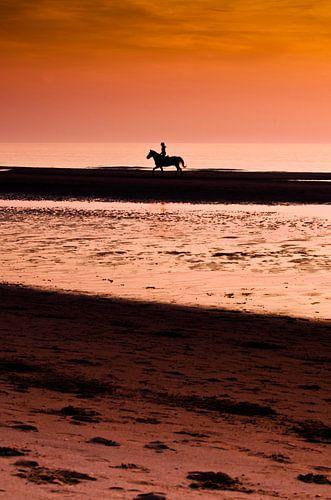 Paardrijden tijdens zonsondergang