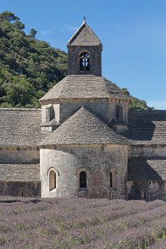 Abdij Notre-Dame de Sénanque, Provence van Jan Piet Hartman