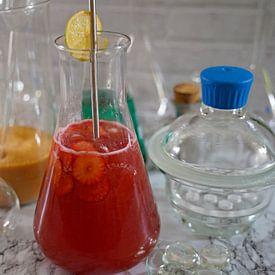 Cocktail Tonic au gin et aux fraises dans une flasque sur Babetts Bildergalerie