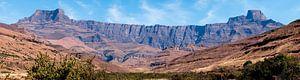 De amphitheater wand van de Zuid-Afrikaanse Drakensbergen in panorama van