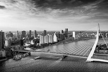Skyline van Rotterdam met de Erasmusbrug