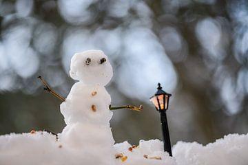 bokeh sneeuwman van Tania Perneel