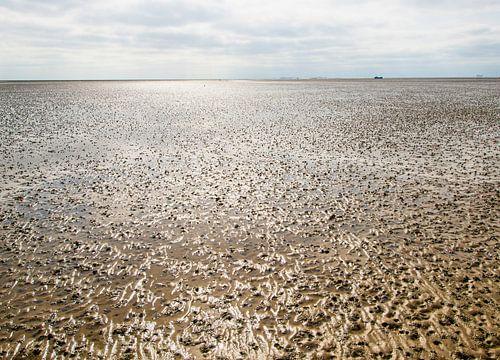 Waddenzee bij eb structuren in het zand van