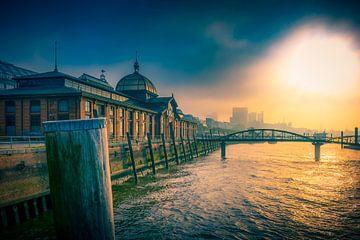 Duitsland, Hamburg, Elbe, Altona, vismarkt, veiling, visafslag, visafslagzaal van Ingo Boelter