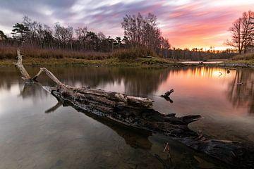Lange sluitertijd van zonsopgang bij Surae in Dorst, Nederland. van Enrique De Corral