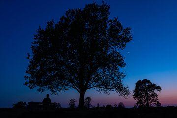 Wenn der Tag zur Nacht wird von Marcel Runhart