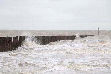 Hollands zeebeeld van Ewan Mol