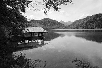 Die Stille des Alpsees von Lisa Gallo