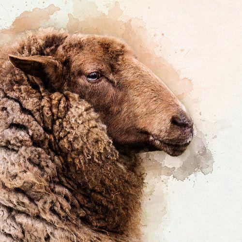 Door de wol geverfd ......... van Art by Jeronimo