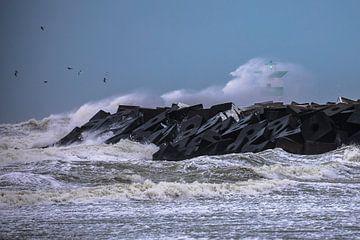 Storm haven Scheveningen van STEVEN VAN DER GEEST