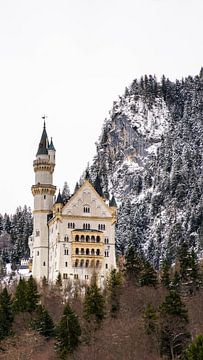 Schloss Neuschwanstein, Deutschland von Jessica Lokker