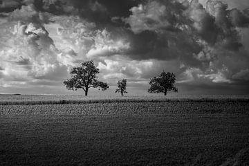 Dramatische Wolken von Oleg-Pitkovskiy-Art