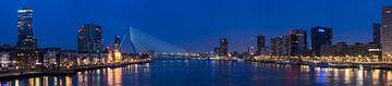 Rotterdam skyline van Edwin van Wijk