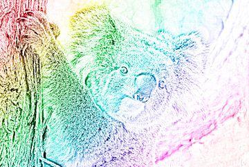 De trotse regenboog koala van Maurits Simons