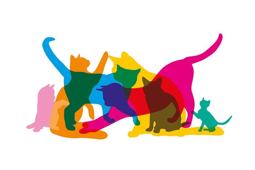 Cats van Harry Hadders