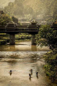 Vissesr in de rivier van Lilian Heijmans