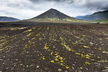 Vulkaan van Sam Mannaerts Natuurfotografie