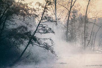 Stiller Sonnenaufgang von Peter Poppe