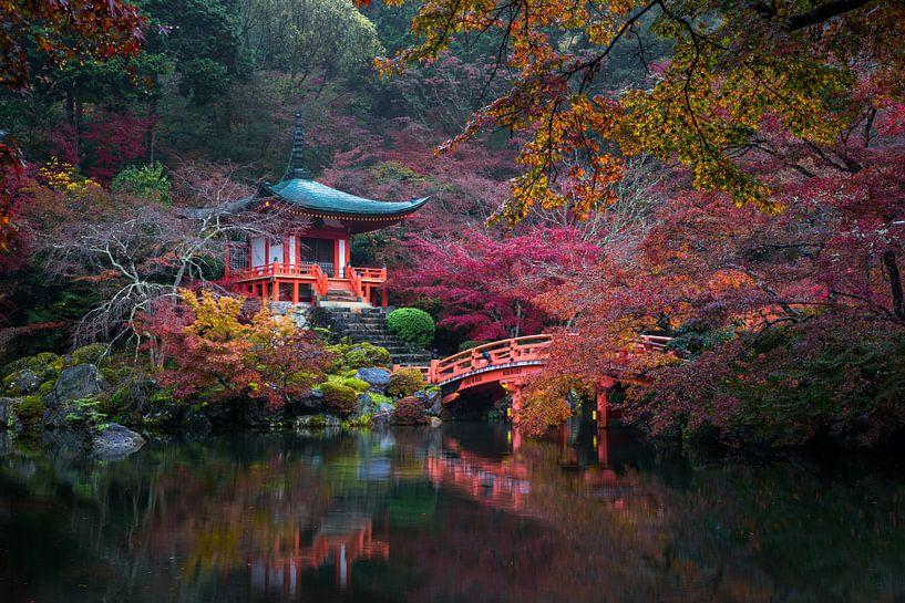 Japanse herfst van Maarten Mensink