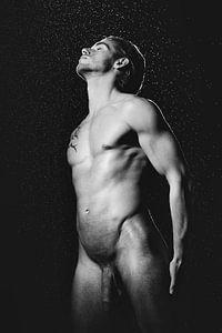 Hele mooie naakte man met prachtig gespierd lichaam. #A9298 van william langeveld