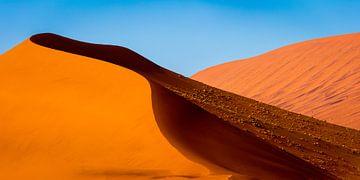 Landschap met rode zandduinen in de Namib woestijn van Chris Stenger