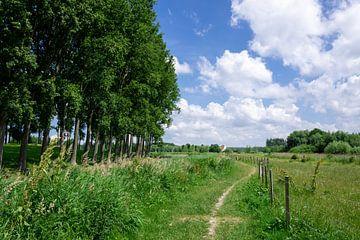 Straße, die entlang der Felder verläuft von Mickéle Godderis