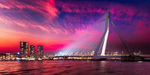 Rotterdam: Erasmusbrug bij avondlicht