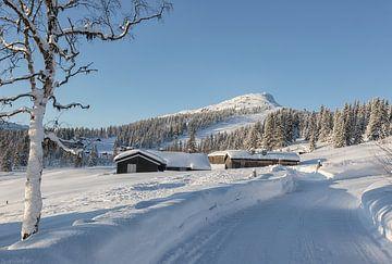 Winterlandschap van Angelika Stern