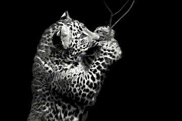 Pantherjunges von Michar Peppenster