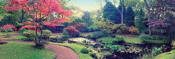 autumn  in Japanese park sur Ariadna de Raadt