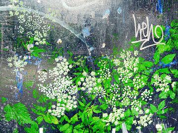 FlowerPower Fantasy 34 van MoArt (Maurice Heuts)