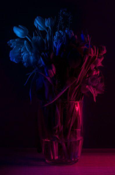 Het Stilleven der bloemen van Yoanique Essink