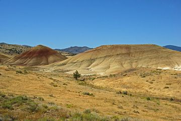 Painted Hills, Oregon, USA van Jeroen van Deel