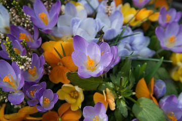Bloemenzee van CreaBrig Fotografie