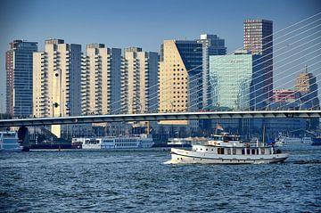 Rotterdam Centrum van Iris Heuer