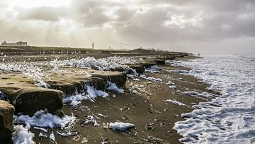 Storm op het strand sur Dirk van Egmond