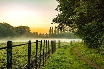 Nebel_01 von Johan Honders