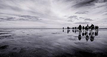 Eb bij Rottumeroog, het onbewoonde waddeneiland van