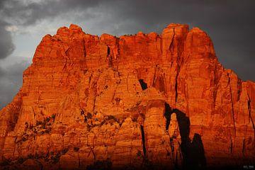 majestic view II van