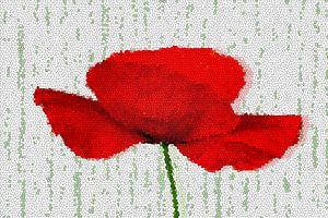 Poppy Mosaic van