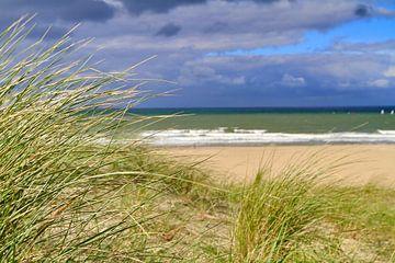 Duinen aan het strand van Micky Bish