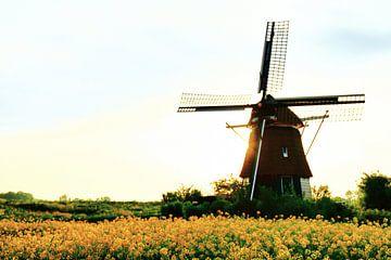 Lentebeeld van Molen de Hommel - Molenplas Haarlem
