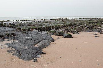 Am Strand von Vlieland in den Niederlanden. von Marjan Schmit Visser