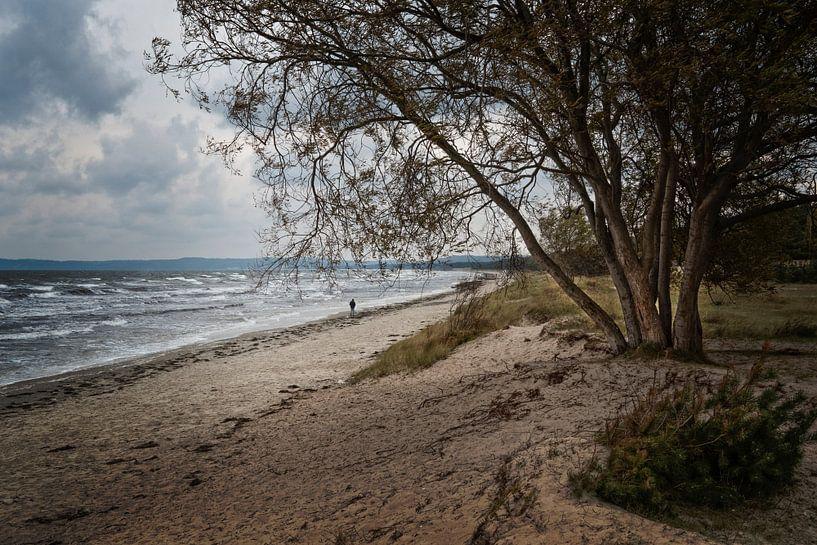 Prora beach van Joke Absen