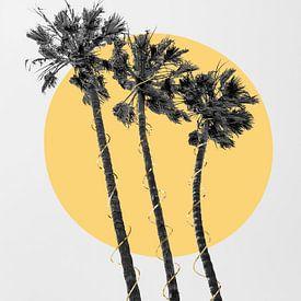 Palmen in der Sonne von Melanie Viola