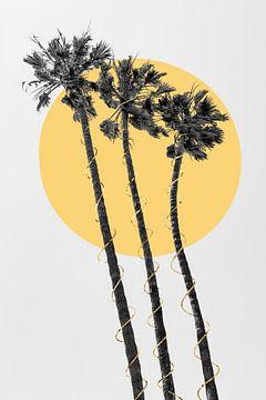 Palmbomen in de zon van Melanie Viola