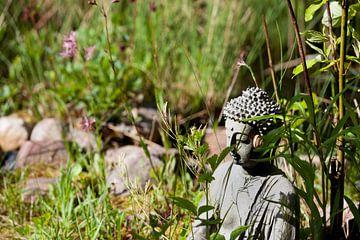 Boeddha in de tuin van t.ART